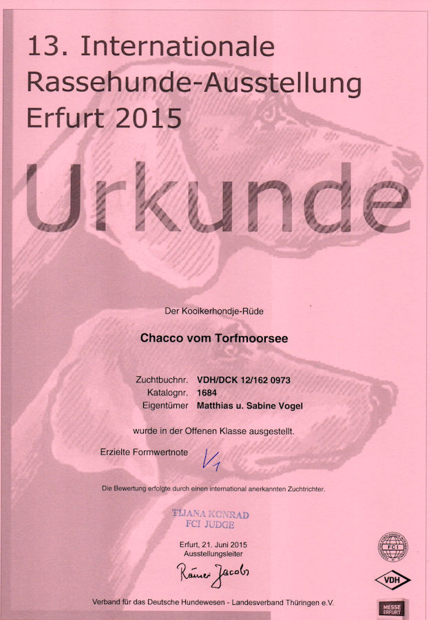 20150621 - Chacco - CACIB Erfurt V1 - klein