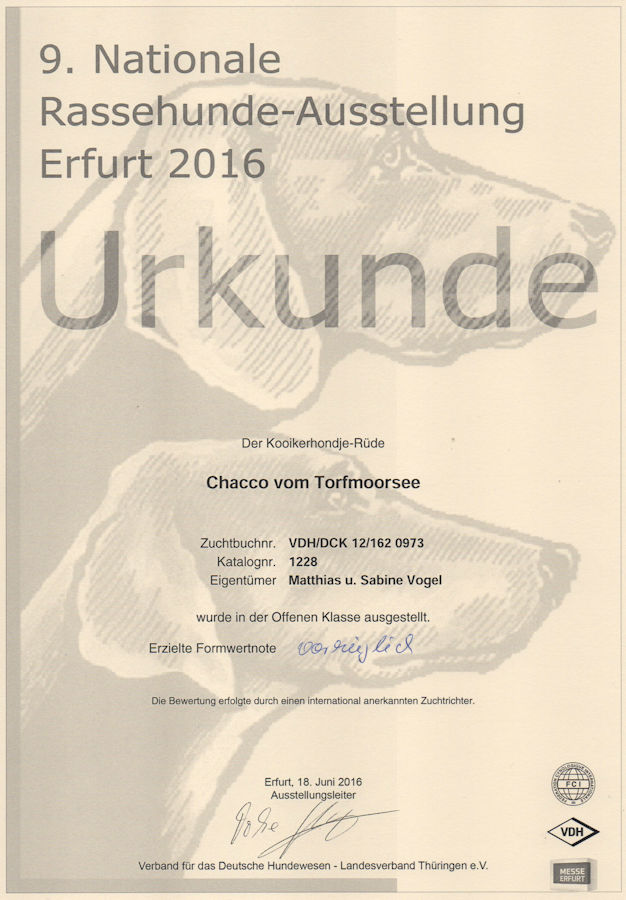 20160618 - Chacco - CACIB Erfurt V1 - klein